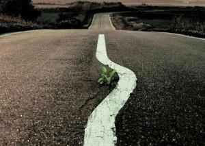 El camino recto? Foto @yoriento